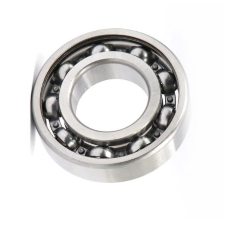 Hot Sale! High Quality Branded Brand NSK/Koyo/NTN 607 609 6201 6203 6205 6301 6303 6005 Deep Groove Ball Bearing/Machine Parts Bearing