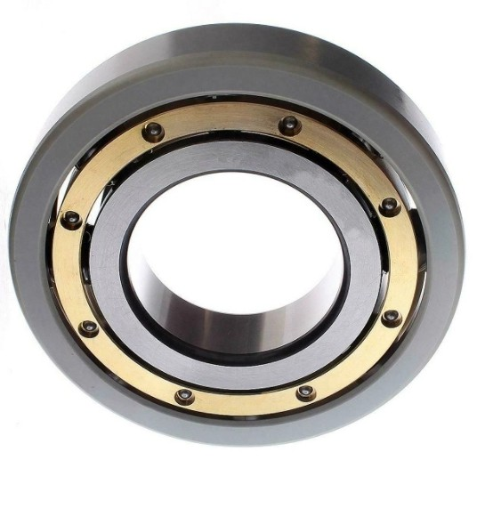 IKO Brand Linear Bushing Ball Bearing for SMT Machine and CNC Printer Lm13uu Lm16uu Lm20uu Bearing