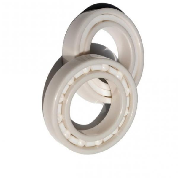 Stock BS 22218 22228 W33c3 Roller Bearing with Polymer Shields -30 Degrees #1 image